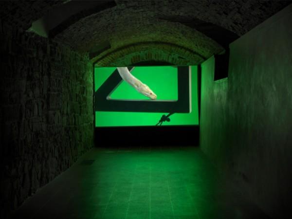 2-Luca-Trevisani-Physical-Examination-Video-HD-suono-stereo-2014-Museo-Marino-Marini-photo-Dario-Lasagni