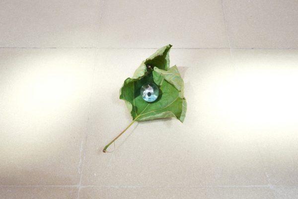 Untitled (13 marbles), 2016. Marble, leaf. variable dimensions. Courtesyof Limiti inchiusi arte contemporanea, Limosano and Fondazione Molise Cultura, Campobasso. Photo: Tartaruga © 2016 Satoshi Hirose All Rights Reserved.